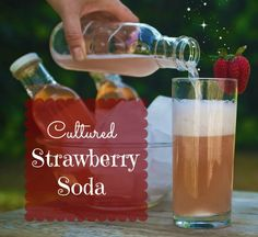 Cultured Strawberry Soda - http://holisticsquid.com/cultured-strawberry-soda/