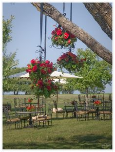 a morning brunch welcomed the sunrise. Maggie Gillespie Designs - Fredericksburg, Texas - Cynlee-Studios Photography