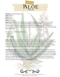 Magical and Medicinal uses of Aloe. Includes free BOS page!
