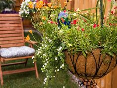 12 Ideal Plants To Choose For Your Hanging Baskets - The Self-Sufficient Living Winter Hanging Baskets, Plants For Hanging Baskets, Diy Hanging, Hanging Planters, Hanging Gardens, Hanging Flowers, Tall Plants, Large Plants, Outdoor Plants