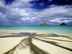 Webshots, the best in Wallpaper, Desktop Backgrounds, and Screen Savers since Oahu Hawaii, Sunsets Hawaii, Waikiki Beach, Strand Wallpaper, Beach Wallpaper, Hd Wallpaper, Hanalei Bay, Palm Trees Beach, Nature Beach