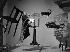 フィリップ・ハルスマン「Salvador Dali (1904-1989)」写真プリント