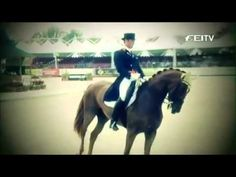Just a dream / EQUESTRIAN