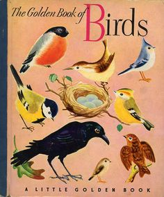 Pretty vintage book cover. Love anything with or about birds.