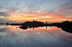 Cape mirror - Cape Town, Western Cape