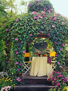 Morning glory covered gazebo ~ beautiful backyard getaway