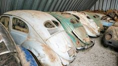 Classic VW - Holy Grail VW Find: Split Window Beetle Collection & More!