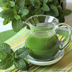 Use this syrup to add refreshing mint flavor to cocktails, hot cocoa, lemonade, sparkling water, hot and cold tea. Mint Recipes, Herb Recipes, Mint Syrup Recipe, Mint Simple Syrup, Simple Sugar, Orange Juice Cocktails, Flavored Lemonade, Molecular Gastronomy, Food Presentation