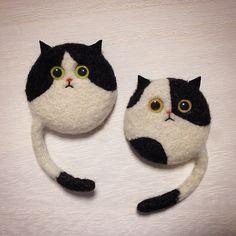 はちわれも。 #cat #bicolorcat #はちわれ猫 #needlefelted #needlefelting #felted #felting #羊毛フェルト #ニードルフェルト