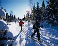 A winter wonderland for skiing and snowshoeing in the Sleeping Bear Dunes National Lakeshore. http://www.mynorth.com/My-North/December-2009/Cross-Country-Ski-and-Snowshoe-Package-Deals-in-Northern-Michigan/
