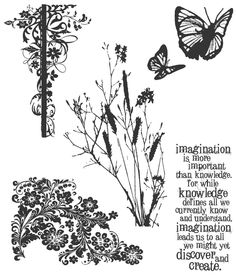 Nature's Discovery Tim Holtz Cling Rubber Stamp Set CMS-049 #StampersAnonymous