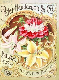 Peter Henderson & Co. Bulbs, Plants and Seeds for Autumn Planting (1879).
