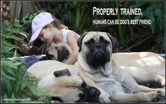 "I'm proudly ""properly trained"" !"