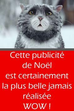 Cette publicité de Noël est certainement la plus belle jamais réalisée! WOW Video Chat, Image Chat, Plus Belle, Love Pet, Teaching English, Funny Animals, Film, Videos, Pets