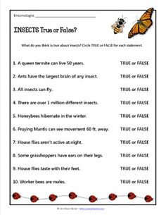 free insects here is a free insects worksheet or quiz and answer key to go along with a free. Black Bedroom Furniture Sets. Home Design Ideas
