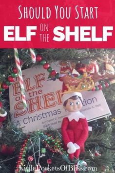should you start elf on the shelf this christmas season while it might bring joy to your child it is not for the faint of heart