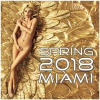 Spring 2018 Miami (EDM, Tech House, Electro House, Deep House, Tropical House, Trance) by Greg Sletteland on SoundCloud
