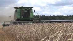 With about 300,000 acres of wheat planted in the state, Georgia remains one of the larger wheat-producing states in the Southeast. The Monitor's Damon Jones recently visited a Middle Georgia farm where harvest was in full swing.