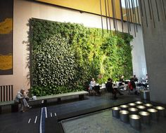 The David Rubenstein Atrium & Vertical Garden