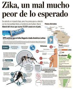 Zika, embarazada,