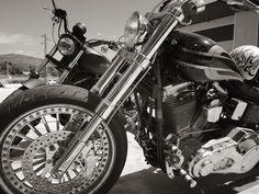 Hire a Harley Davidson in Sitges, www.bastards-shop.com #bastardsbcn #bastards #barcelona #sitges #hire #rental #summer #dyna #sportster #harleydavidson #chopper #bobber #enjoy #vacation #tours