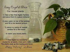 Easy Crystal exlixir