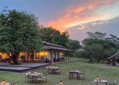 Kirkman's Kamp| Specials 4 Africa