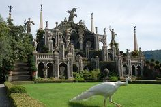 Isola Bella, Italy--on Lake Maggiore. This is incredible when you actually see it. The white peacocks are around and we even got a picture of one with it's tail displayed. Places In Italy, Places To See, Stresa Italy, New York City, Milan, Real Life Fairies, Voyage Europe, Parcs, Grand Tour