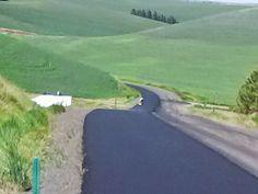 Asphalt Pavement, Golf Courses, Country Roads