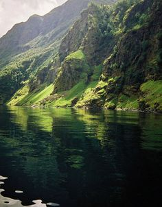 theworldwelivein:  Green Fjord - Aurlandsfjord - Norway (by malcolm bull)