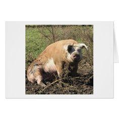 Greeting Card - Sheila my Big Fat Pig - diy cyo personalize design idea new special custom