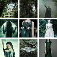 House Sarsfield, lords of Sarsfield, True to the Mark House Sarsfield is a noble house from the Westerlands, sworn to house Lannister. They blazon their shields with a green arrow on white bend on green. Their seat Sarsfield is situated along the River Road, northeast of Casterly Rock and southwest of the Golden Tooth. Ser Melwyn Sarsfield is a knight from House Sarsfield. He is married to Shierle Swyft.