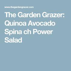 The Garden Grazer: Quinoa Avocado Spina ch Power Salad