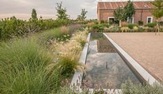 Garden in Finca Las Tenadas (Spain). By Fernando Martos. Mediterranean Garden Design, Home And Garden Store, Hardscape Design, Backyard Water Feature, Water Features In The Garden, Patio, Water Garden, Landscape Architecture, Shade Garden