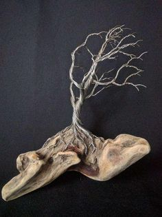 Amazing looking driftwood piece with gnarly old looking twisted wire tree clinging on. 8 inches tall 6 inches long. Sculpture #170313 by TotallyTwistedTrees on Etsy
