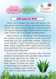 Learn Turkish Language, Grade 1, Preschool, Drama, Told You So, Education, Math, Learning, Herbs