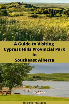 A guide to visiting Cypress Hills Provincial Park in southeast Alberta - what to do, where to eat and where to stay #Albertaparks #southernalberta #CypressHillsProvincialPark #whattodo #summervacation