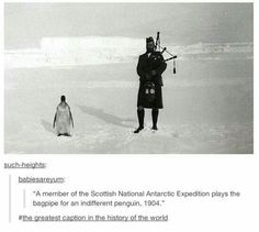 It's the bagpipes. That poor penguin. How could he hear over all that wind?