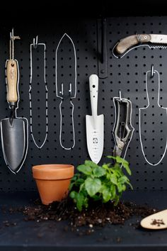 After she pots this lemon balm, Michelle will know exactly where her bamboo trowel goes. shed design shed diy shed ideas shed organization shed plans Garden Tool Shed, Garden Tool Storage, Garden Organization, Organizing, Shed Makeover, Little Gardens, Small Gardens, Garage Interior, Backyard Sheds