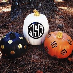 Painted pumpkins w/ all my favorites - dots, mono, & native