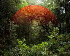 Path by Mark Dorf | iGNANT.de