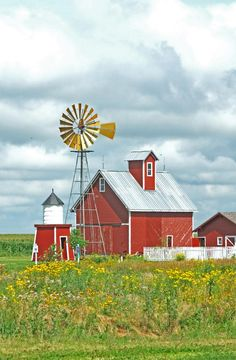 Wind mill and red barns