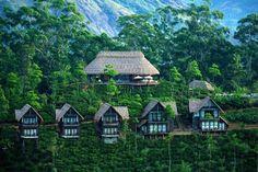 Ella Tourism: Best of Ella, Sri Lanka - TripAdvisor