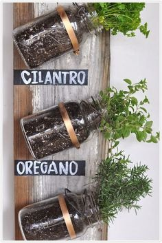 A MASON JAR HERB GARDEN. Perfect for small spaces or apartments. I love healthy DIY projects.