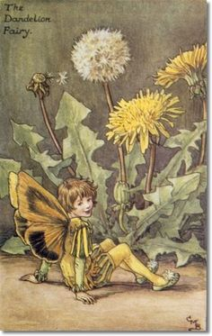 Cicely Mary Barker - Flower Fairies of the Spring - The Dandelion Fairy Archival Fine Art Paper Print