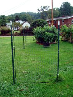 The Gate Consists Of A Small Piece Of Welded Wire Fabric. It Is Attached To
