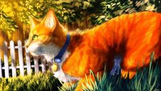 Image result for warrior cats