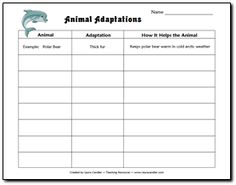 Animal Adaptations Chart: Give the students the animals (could use in older grades and have the students choose the animal) and work as a class to discuss the adaptations that these animals need to be able to use that adaptation to survive.