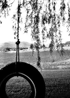 Tire swing in a willow tree. An oddly specific must on my bucket list.