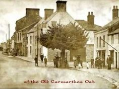 The Old Carmarthen Oak. My Grandparents lived in Old Oak Lane for more than fifty years. Vintage Pictures, Old Pictures, Old Photos, Aberystwyth, Cymru, Places Of Interest, Vintage Travel Posters, Welsh, Homeland